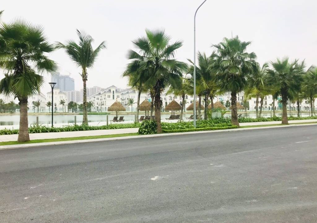 Bán biệt thự đơn lập căn góc đẹp nhất khu Sao Biển, Vinhomes Ocean Park (3)