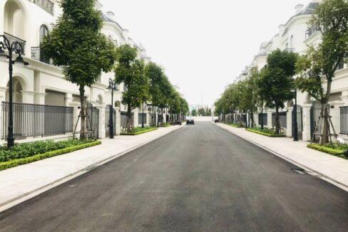 Biệt thự song lập bán Vinhomes Ocean Park Sao Biển, dt 150m2, 3.5 tầng (3)