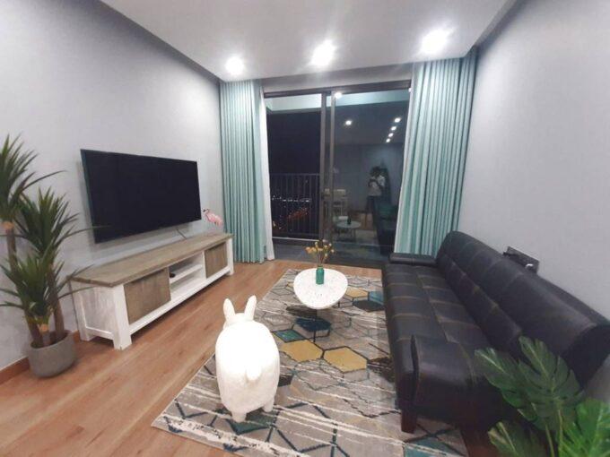 Cho thuê căn hộ D2 The 6th Element Tây Hồ, đủ đồ, giá cực rẻ (1)