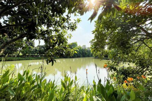 Cho thuê biệt thự đơn lập không đồ tại KĐT Vinhomes Riverside (21)